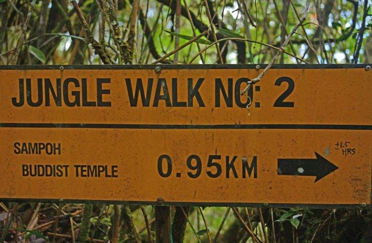 Malaysia: Brinchang jungle walk