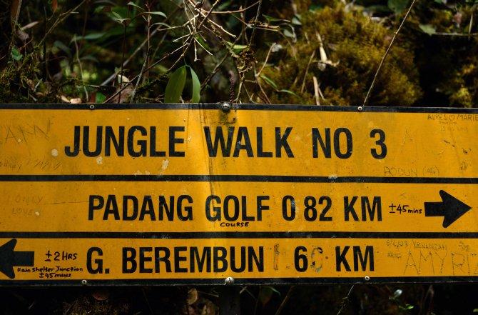 Malaysia: Brinchang jungle walk sign