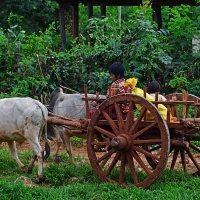 Burma's Bagan to Inle Lake