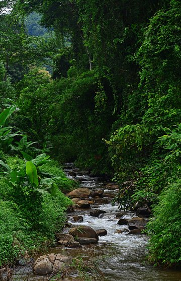 Thailand: Khun Korn Waterfall near Chiang Rai