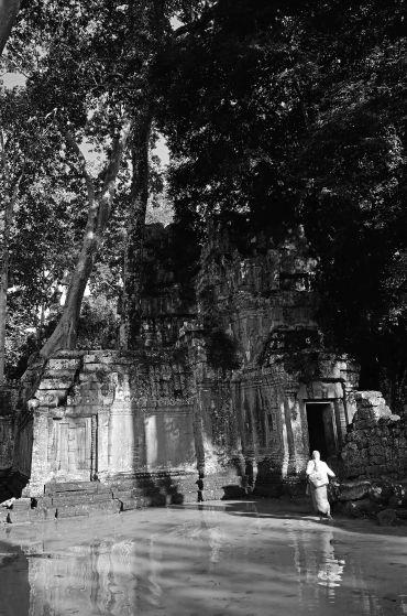 Ta Prohm, Cambodia, SE Asia, temples