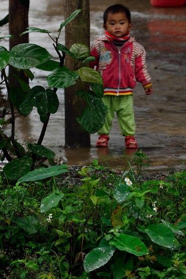 Hue, Vietnam, child, citadel