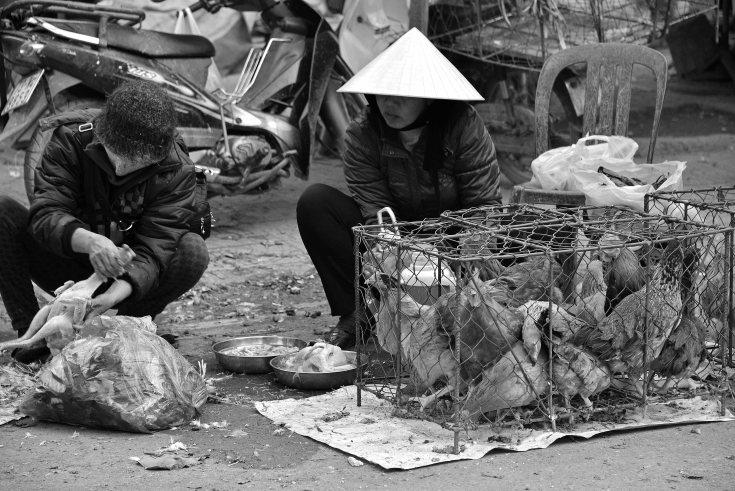 street, Dong Hoi, Vietnam