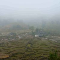Surreal Sapa - Northwest Vietnam