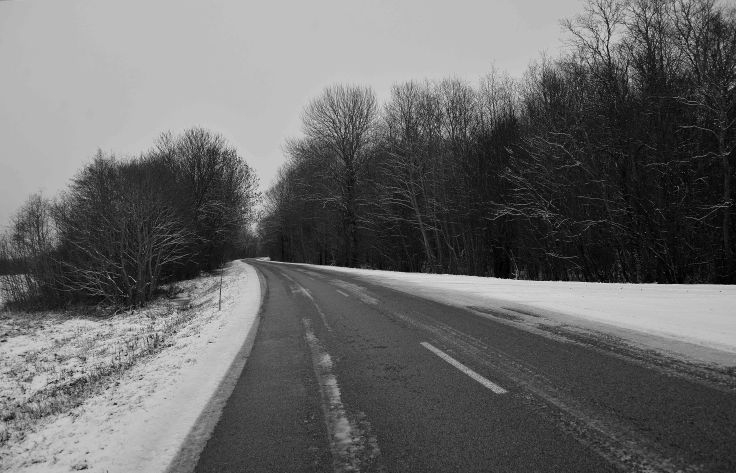Saaremaa Island winter landscape