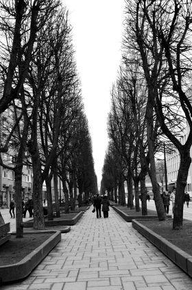 Laisvės Avenue Kaunas, Lithuania