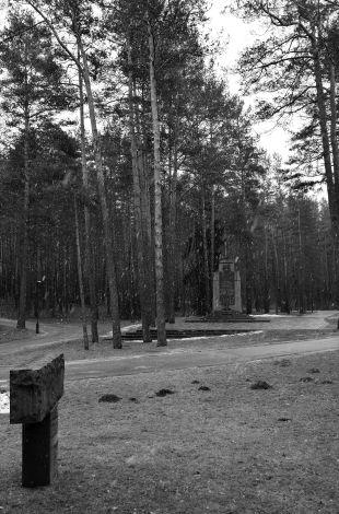 Vilnius,Paneriai woodlands, lithuania