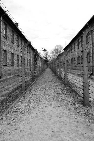 Auschwitz, poland, krakow, concentration camp