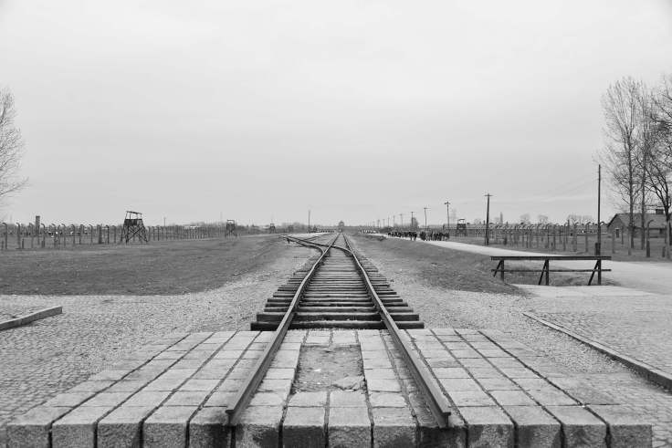 Auschwitz, poland, concentration camp