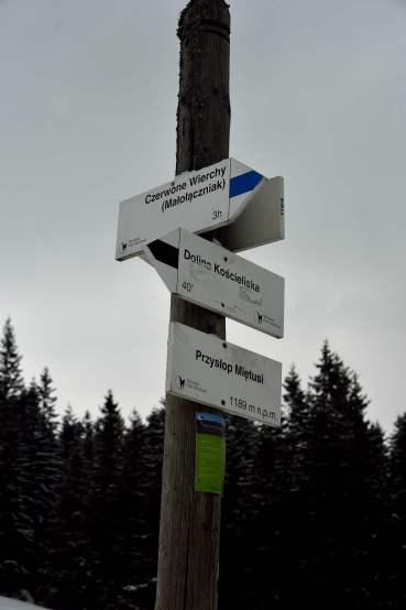 zakopane, tatras, poland, europe, walking trail signs