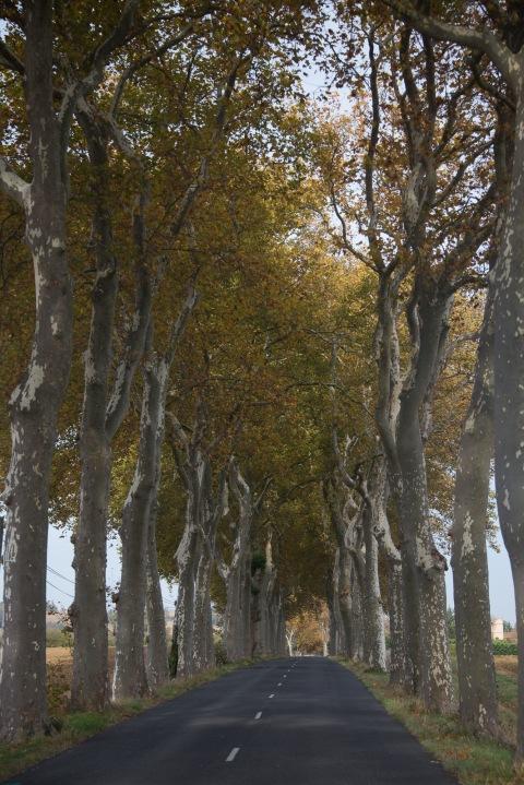 Belflou, France, touring, motorhome