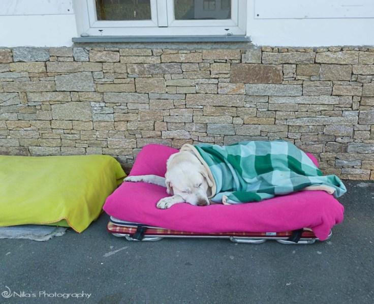 Deiva Marina, Italy, camping, motorhome