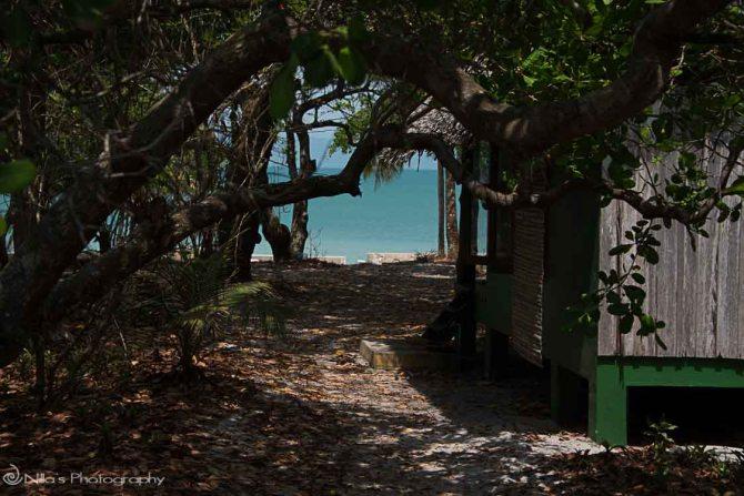 Thailand, Koh Phayam Island
