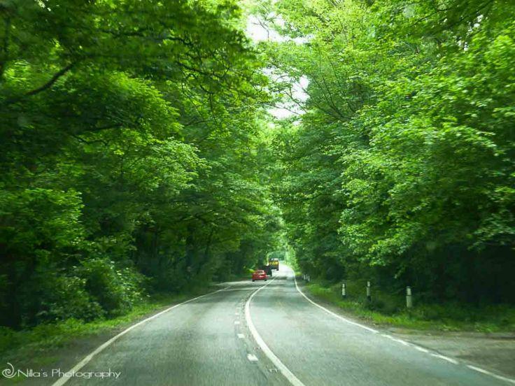 Loxley Woods, UK, motorhoming