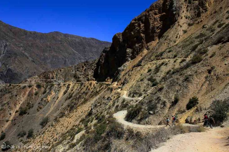 trekking, Peru, Colca Canyon, South America