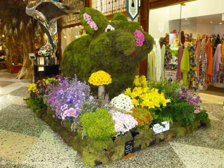 Brisbane Arcade, Australia, flowers