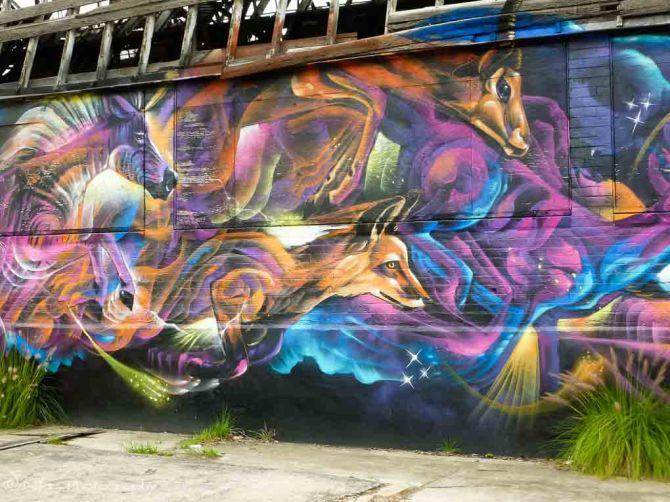 Red Hill, Brisbane, Australia, street art