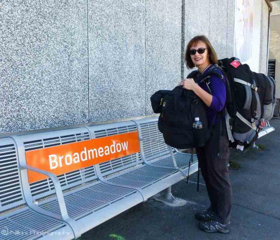 Broadmeadow station, Newcastle, NSW, Australia