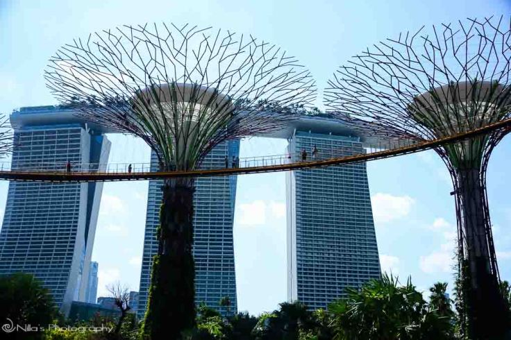 Singapore, Gardens by the Bay, Marina Bay Sands