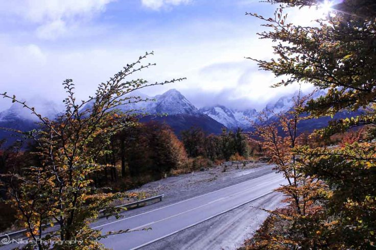 Tierra del Fuego National Park, Argentina, South America