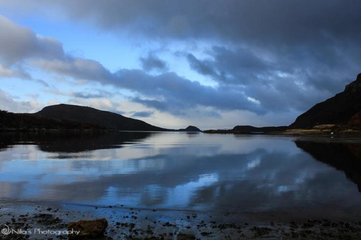 Tierra del Fuego National Park, Argentina, South America