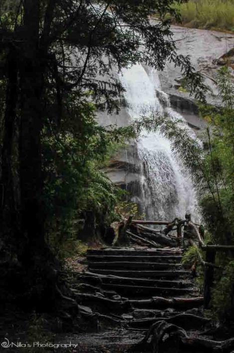 Chile:Cascada Aguila - Parque Nacional Huerquehue