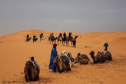Erg Chebbi, Morocco, Africa