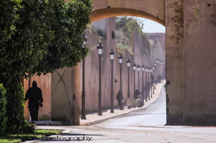 Bab Berdaine Gate, Meknès, Morocco, Africa
