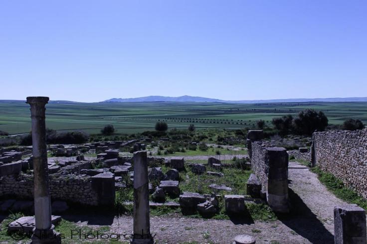 Volubilis, Meknès, Morocco, Africa