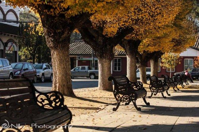 Plaza de Armas, Santa Cruz, Chile, South America