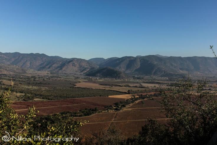 Viña Santa Cruz, Chile, South America