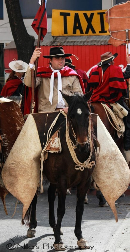 Gaucho parade, Salta, Argentina, South America