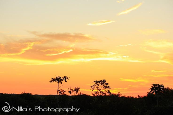 Sunset, Pampas, Rurrenabaque, Rio Yacuma, Bolivia, South America