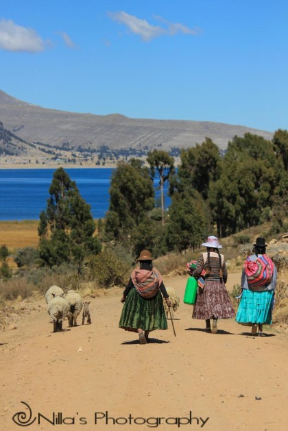 Lake Titicaca, Copacabana, Bolivia, South America