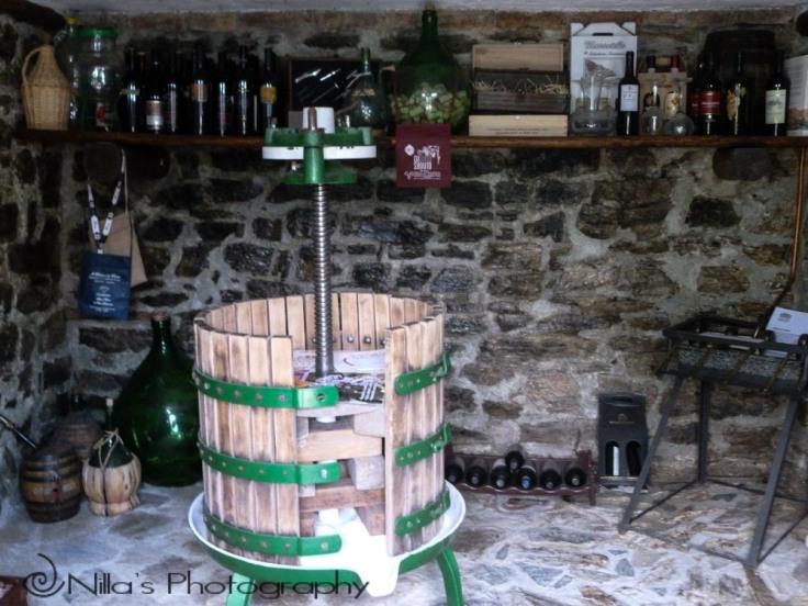 Tenuto Bocchineri, Rogliano, Calabria, Italy, Europe