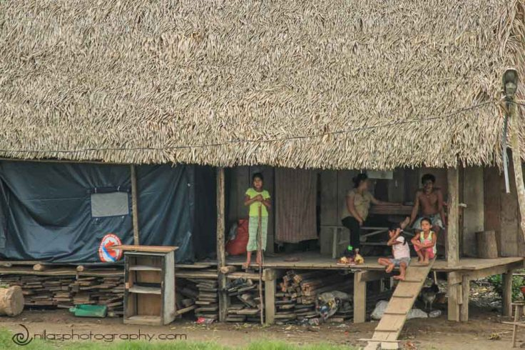 Villages, Amazon River, Peru, South America