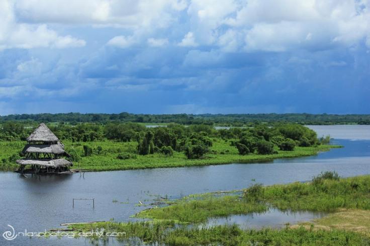 Iquitos, Peru, South America, Amazon