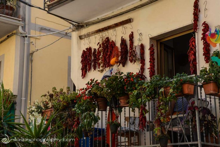chillies, Diamante Murales, Calabria, Italy
