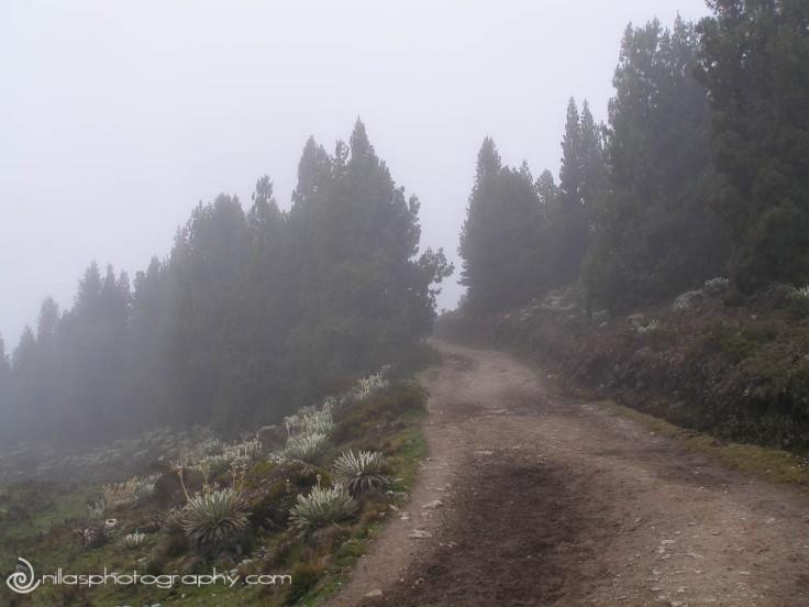 San Rafael del Páramo de Mucuchíes, Venezuela, South America