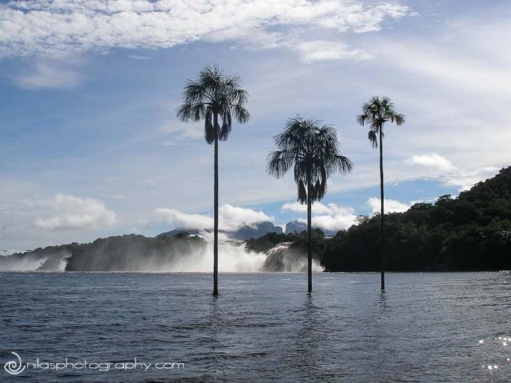 Canaima Lagoon, Venezuela, South America