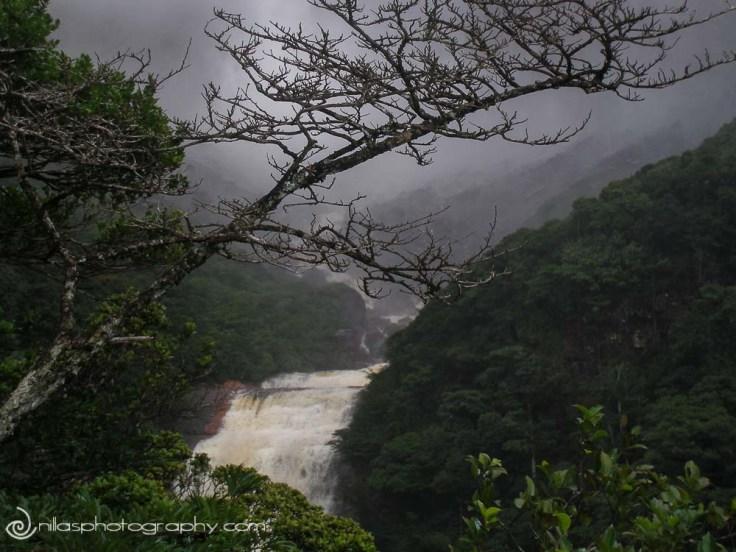 Mirador Laime, Angel Falls, Canaima, Venezuela, South America