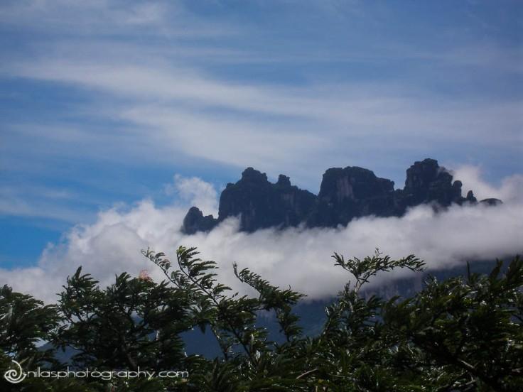 Angel Falls, Canaima, Venezuela, South America