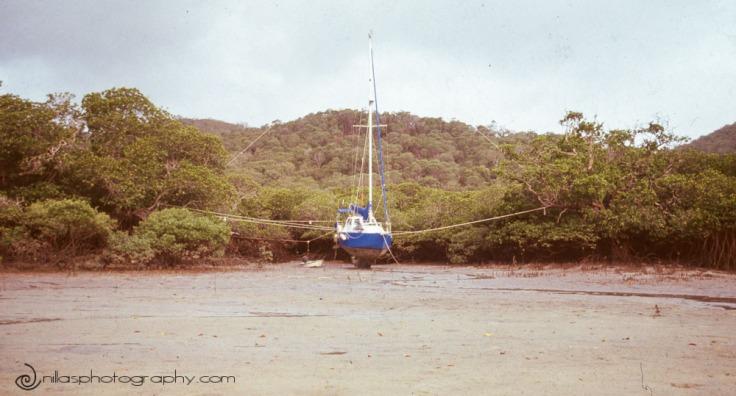 cyclone, Trammel Bay, Queensland, Australia, Oceania