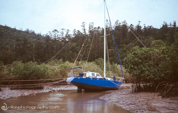 cyclone, Middle Percy Island, Queensland, Australia, Oceania