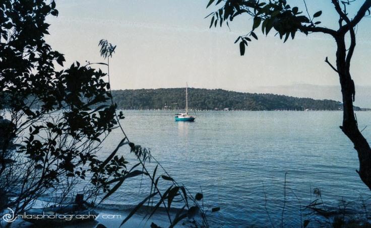 sailing, Sydney, Australia, Oceania