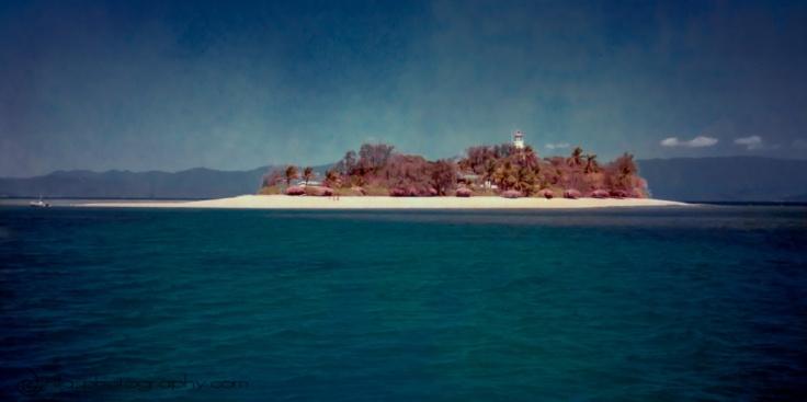 Low Isles, Whitsundays, Australia, Oceania