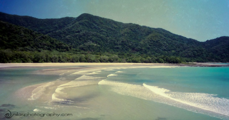 Cape Tribulation, Lizard Island, Queensland, Oceania