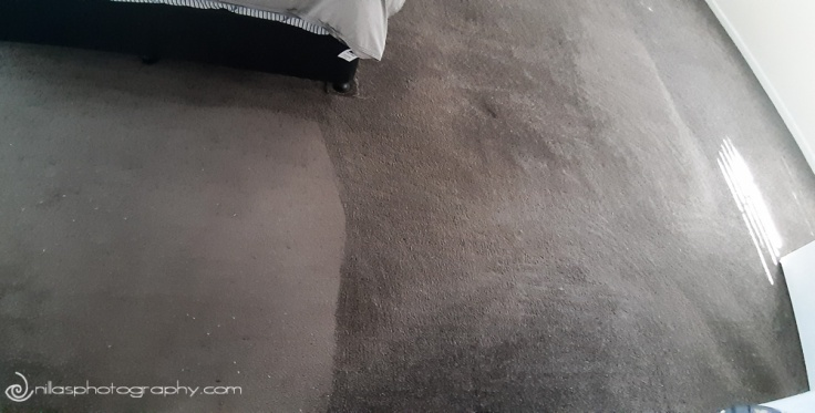 Carpet raking, renovating, Brisbane, Queensland, Australia, Oceania