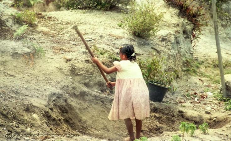 Young girl digging in roadside, Pulau Samosir, Lake Toba, Indonesia, SE Asia