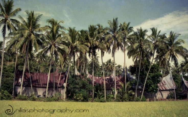 Belimbing village, Bukittinggi, Sumatra, Indonesia, SE Asia
